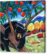 Bear In The Apple Tree Canvas Print