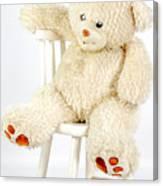 Bear On A Chair Canvas Print