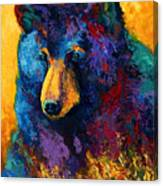Bear Pause - Black Bear Canvas Print