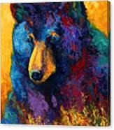 Bear Pause - Black Bear Canvas Print