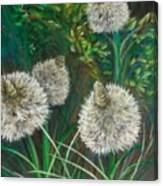 Bear Paw Grass Canvas Print