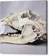 Bear Skull And Egg - Life Goes On Canvas Print