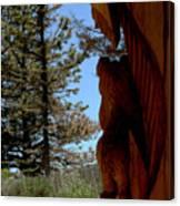 Bear Watch Canvas Print