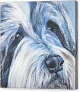 Bearded Collie Up Close In Snow Canvas Print