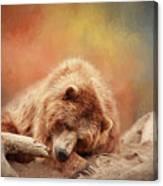 Bearly Asleep Canvas Print