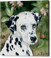 Beaudiddeley Canvas Print
