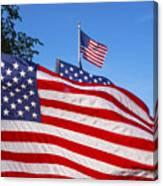 Beautiful American Flags Canvas Print