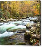 Beautiful Autumn Colors Little Pigeon River Smoky Mountains Canvas Print