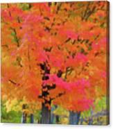 Beautiful Autumn Day Canvas Print