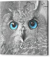 Beautiful Blue-eyed Owl Canvas Print