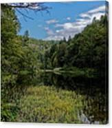 Beautiful Clear Creek Canvas Print