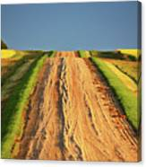 Beautiful Colors Along A Saskatchewan Country Road Canvas Print