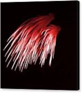 Beautiful Fire Works With Splash Of Red Color.  Canvas Print