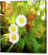 Beautiful Flowers Canvas Print
