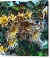 Beautiful Flowers In A Group Canvas Print