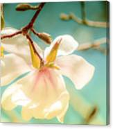 Beautiful Imperfections Canvas Print