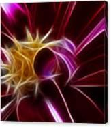 Beautiful Insight Of A Dahlia Canvas Print