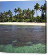 Beautiful Lanai Beach Canvas Print