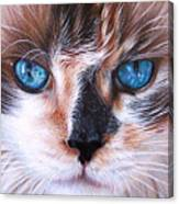 Beautiful Mia Canvas Print