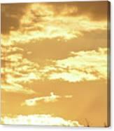 Beautiful Morming Sky  Canvas Print