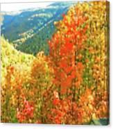 Beautiful Mother Nature  Canvas Print