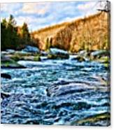Beautiful Outdoors  Canvas Print