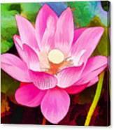 Beautiful Pink Lilies Canvas Print