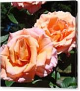 Beautiful Pink Orange Rose Flowers Garden Baslee Troutman  Canvas Print