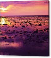 Beautiful Purple Sunset During Tide Shows Up Rocky Beach Canvas Print