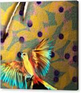 Beautiful Scissor-tailed Flycatchers Canvas Print