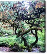 Beautiful Japanese Garden,butchart Gardens,victoria,canada 2. Canvas Print