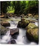 Beautiful Stream In Western Ghats Region Of Karnataka India Canvas Print