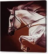 Beautiful White Running Horse 9iu Canvas Print