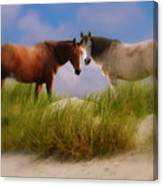 Beauty And Friendship Canvas Print