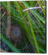 Beauty And Intricacy Canvas Print