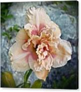 Beauty And The Boulder - Daylily Canvas Print