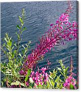 Beauty By Waters Edge Canvas Print