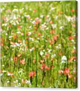 Beauty Is Spring Canvas Print