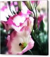 Beauty Of The Day Canvas Print