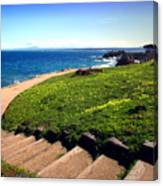 Beauty Of The Pacific Grove Shoreline Two Canvas Print