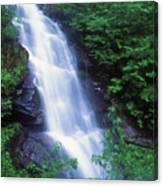 Beaver Brook Mount Moosilauke Canvas Print