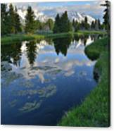 Beaver Dam At Schwabacher Landing Canvas Print