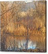 Beaver Dam At Sunset In Colorado            Canvas Print