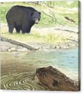Beaver Canvas Print