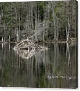 Beaver Lodge Reflections Canvas Print