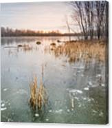 Beaver Place Canvas Print