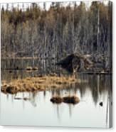 Beaver Residence Canvas Print