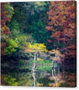 Beavers Bend Trees Canvas Print