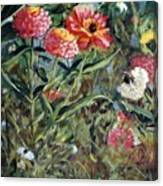 Bed Of Zinnias Canvas Print