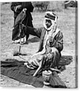 Bedouin Falconer, C1910 Canvas Print